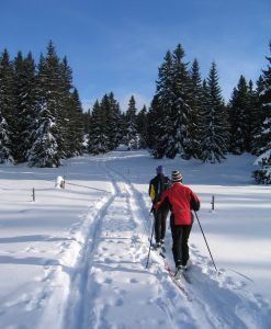 Find Olympic-class cross country skiing in Banff National Park in the Canadian Rockies.