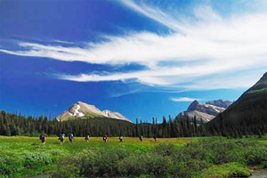 yamnuska hiking Guided Private Tours